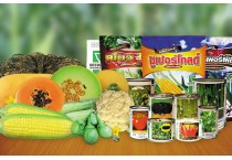 Vegetable Seeds Commercial Pack